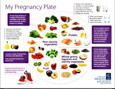 Pregnancy-Plate